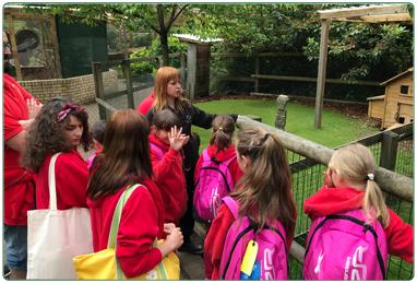 Group visits to Calderglen