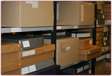 Collections inventory and digitisation