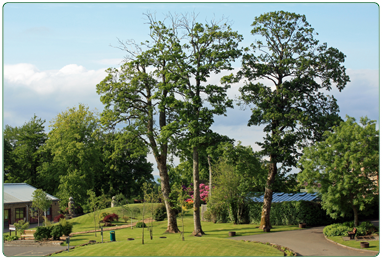South Lanarkshire Leisure and Culture's Calderglen Country Park.