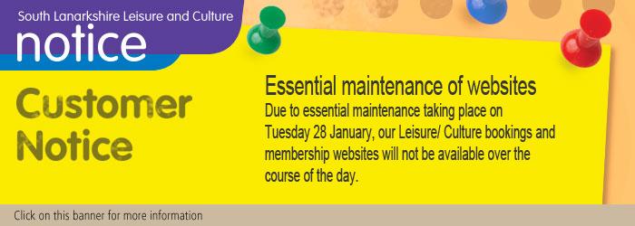 Essential maintenance of websites